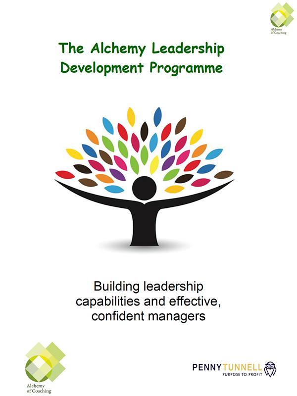 Alchemy-Leadership-Develoopment-Programme